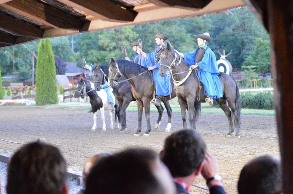 Equestrian show